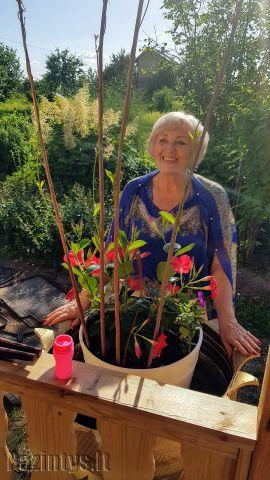 Marija, 63, marivax, Biržai